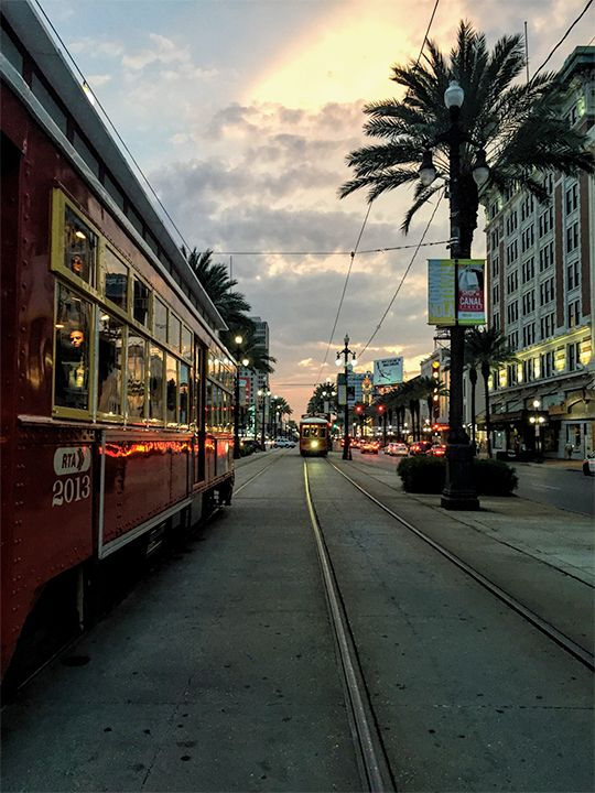 [Streetcars on Canal Street at sunset]
